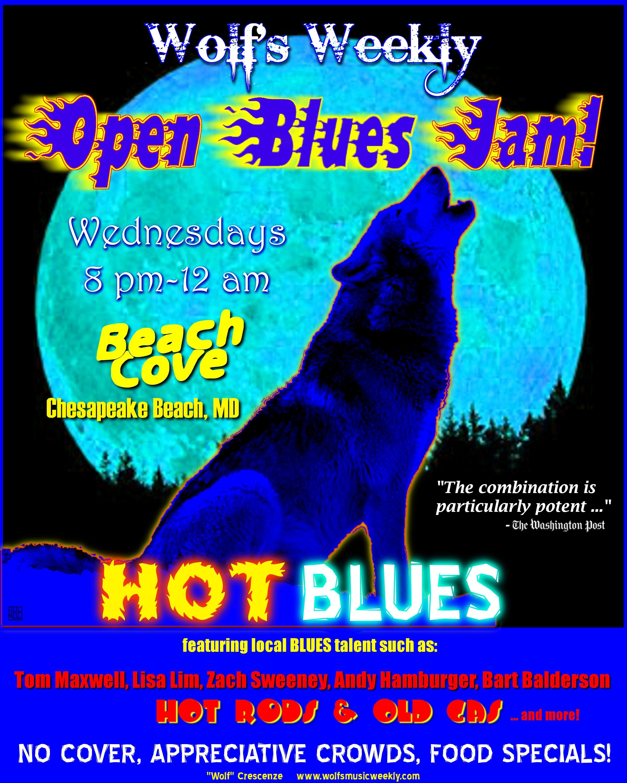 BluesJamspics/WOLFSbeachcove.jpg